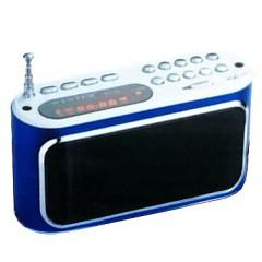 Портативная радио-колонка WSTER WS-289 (USB / TF)