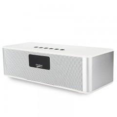 Колонка Musky Stereo DY-21L (Bluetooth, MicroSD, AUX, FM)